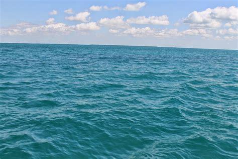 Open Water open waters where are you headed fogwalkerbirdie