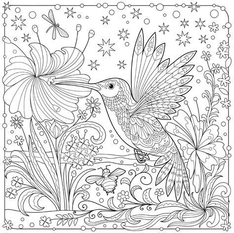 libro fletcher and the falling hummingbird art mandalas colorear y pintar