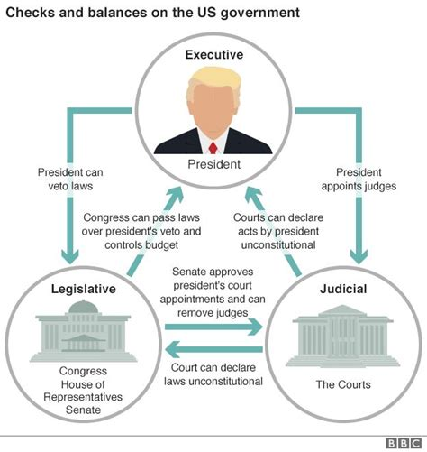 exle of checks and balances donald considers issuing new travel ban