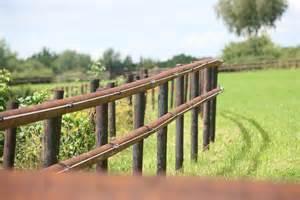 cl 244 ture 233 lectriques ou en bois pour chevaux pours et contres