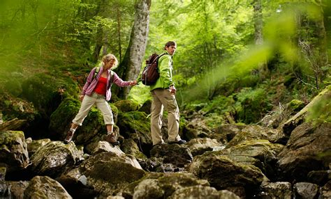 backyard nature bavaria experience nature landscapes outdoor activities