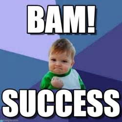 Success Baby Memes - what to love about your business competitors