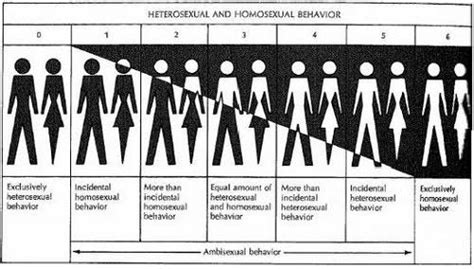 test o etero bisexuality sexinfo
