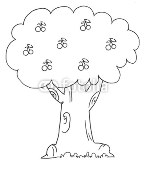 coloring page of a cherry tree quot coloring page outline of a cherry tree quot stock image and