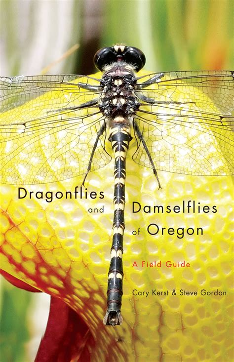dragonfly field guide shows where you can find these most