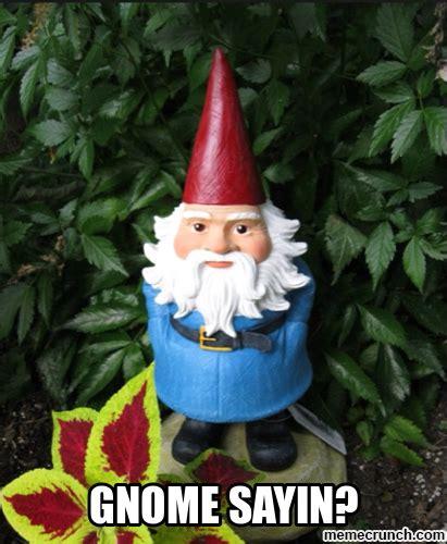 Gnome Meme - gnome sayin