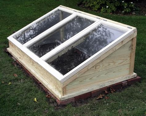 Cold Box Gardening by Allotments And Gardens Cold Frames Pushing Up Dandelions
