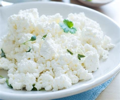 cottage cheese paneer source of protein