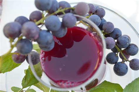 my ate 3 grapes got grapes most delicious home made grape juice a german in seattle
