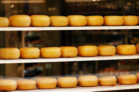 Shelf Cheese by New Year Cheese Diet Lifestylesupportguru