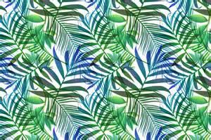 Kitchen Island With Leaf tropical palm leaf wallpaper wallpapersafari