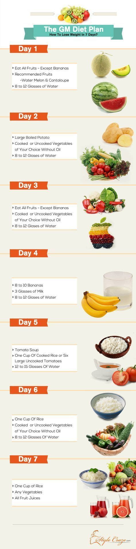 Gm Detox Diet Plan by 25 Best Ideas About Gm Diet On Gm Diet Plans