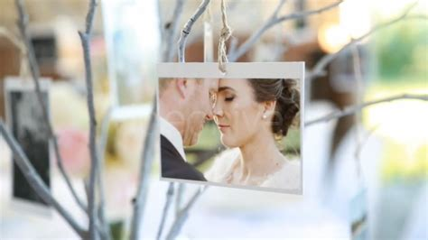 videohive photo gallery at a country wedding adobe after