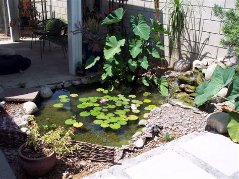 schubert landscaping certified aquascape contractor