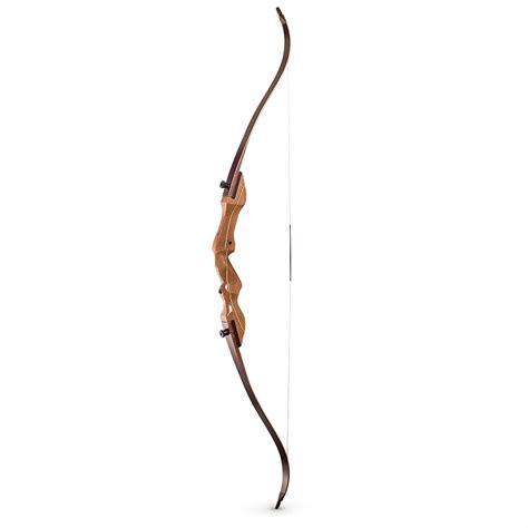 recurve bows valley wildlife care