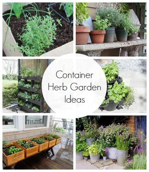 Container Herb Garden Ideas Potted Herb Garden Ideas