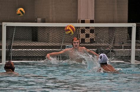 water polo goalkeeper books m a water polo goalie alex gow turns away 33 inmenlo