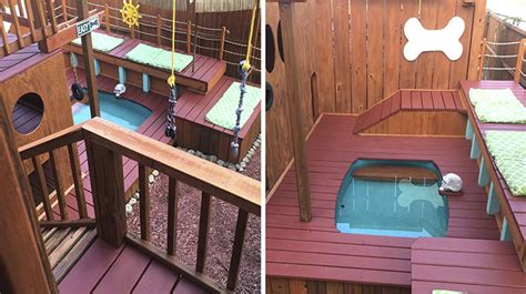 dog playground backyard man spends 2 years turning his backyard into an awesome dog playground top13