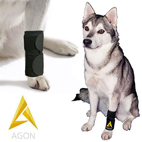 front leg brace agon canine front leg brace paw compression wraps with import it all