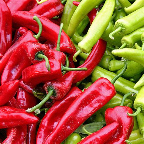 know your chilies