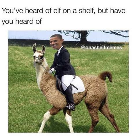 Elf On A Shelf Meme - you ve heard of elf on the shelf furvilla