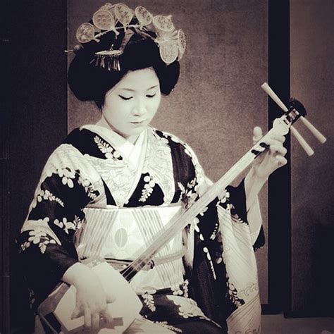 free download mp3 geisha new maiko she plays the traditional music by koto such like a