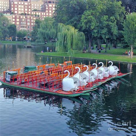 swan boats boston video boston swan boats photograph by gina sullivan