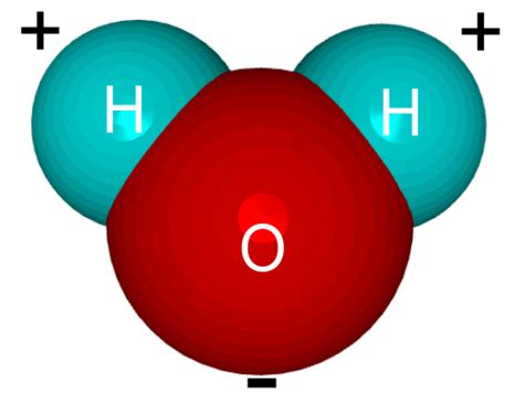 Mouse Oxygen water molecule clipart best