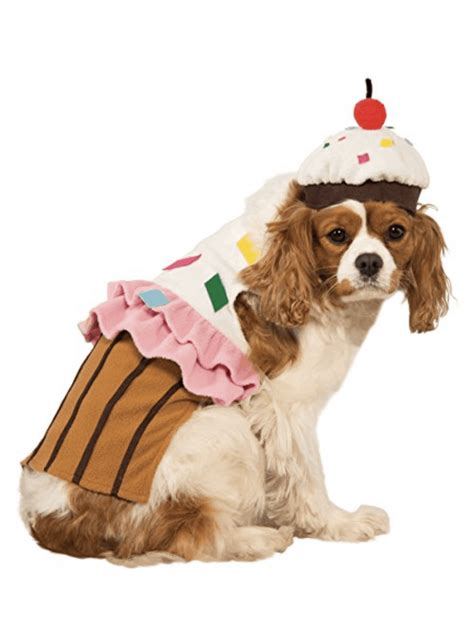 halloween dog costumes    unblurred lady