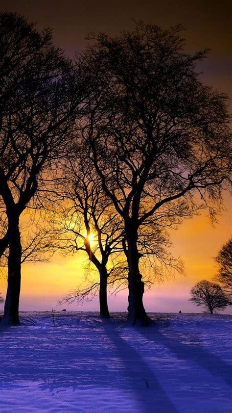Landscape Xperia Wallpaper 1080x1920 Sunset Winter Trees