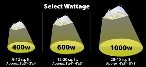 wattage calculator how much light should you have