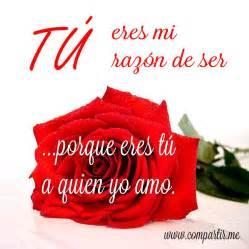 imagenes de rosa rojas con frase de amor imgenes bonitas para imagenes de rosas con frases de amor imagenes romanticas