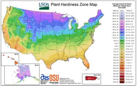 what is my gardening zone usda unveils new plant hardiness zone map extension