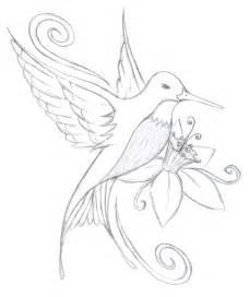 Hummingbird Outline Picture by Hummingbird Flower Design Every Has A Story Pinte