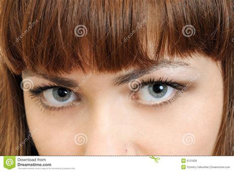 imagenes ojos grises ojos grises hermosos grandes imagen de archivo libre de