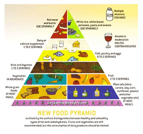 printable version of food pyramid how to use the food group pyramid for better eating