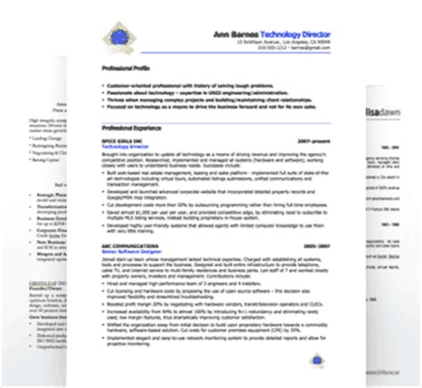 music industry executive free resume sles blue sky
