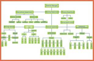 apple organizational structure bio example