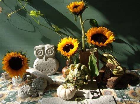 Garten Deko Herbst by Beton Deko Im Herbst Meriseimorion
