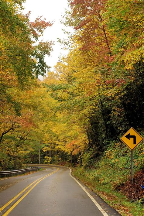 asheville fall colors 199 best fall color in nc mountains images on
