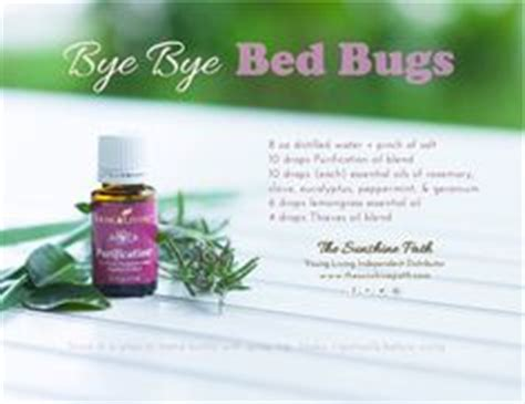 essential oils bed bugs 1000 images about all about essential oils on pinterest