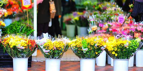 prince edward flower market new year flower market hong kong tourism board