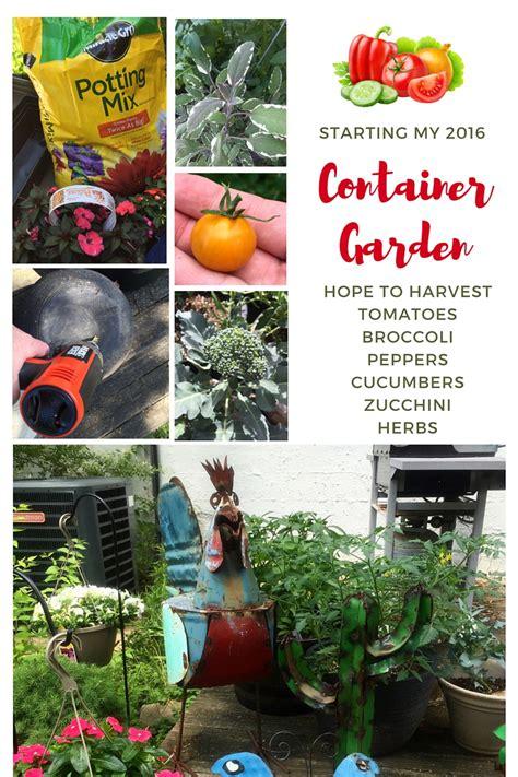 starting a backyard nursery backyard broccoli more in my container garden video jp