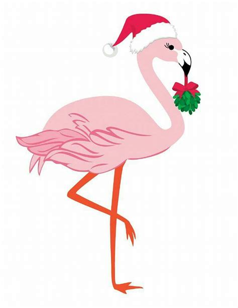 christmas flamingo for pam cameo pinterest flamingo