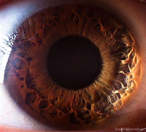 foto close  pupil mata menggunakan mikroskop
