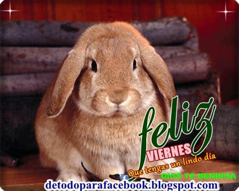 imagenes viernes facebook imagenes bonitas para muro de facebook feliz viernes