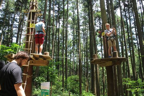 Forest Mba International Trip 2016 by 6 11 Sat Odawara Forest Adventure Day Trip Student