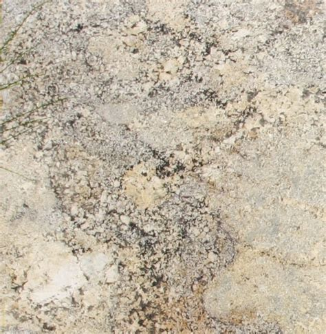 Sagebrush Granite Countertop by Brush Granite