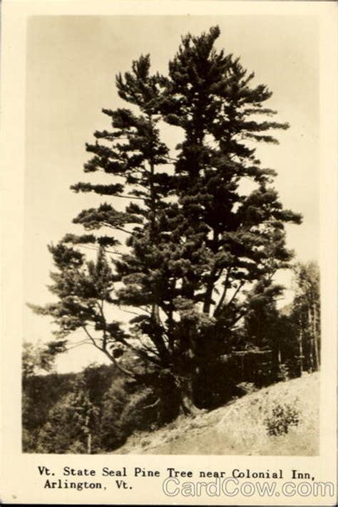 vermont pine xmas trees vt state seal pine tree arlington vt