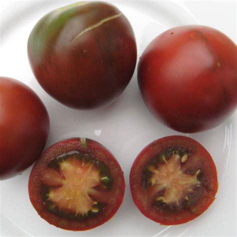 Tomot Black Plum tomate black plum